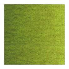 RAYART - Peinture a l'huile Van Gogh Vert olive 620