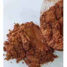 RAYART - Poudre Mica bronze 5g